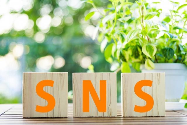 "<img  src=""SNS.jpg"" alt=""SNS"" />"