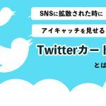 SNSに拡散された時にアイキャッチを見せるTwitterカードとは?
